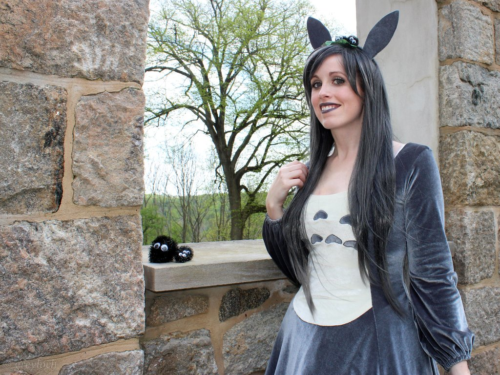 Different and an attractive collection of costumes in Totoro