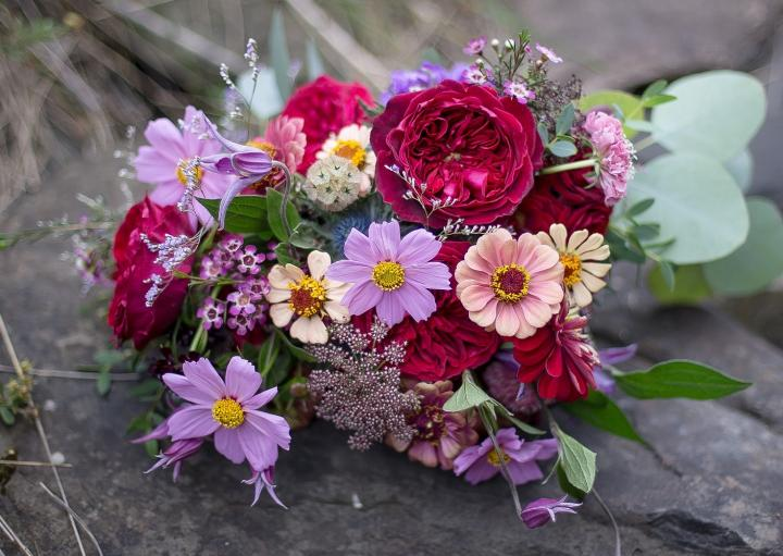 Online flower vendor A shelter to communicate love